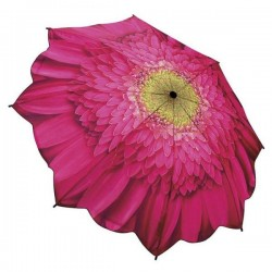 Galleria Umbrella - Pink Daisy