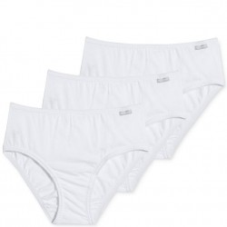 Jockey Elance Cotton Hipster (3 PACK) Style #1488 - White
