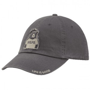 Mens Papa Bear Chill Cap
