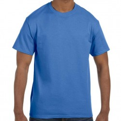Hanes Men's TAGLESS® Short Sleeve T-Shirt - Palace Blue