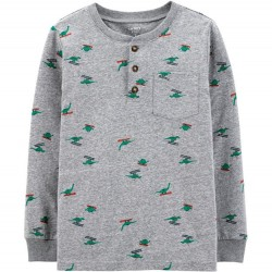 4 to 7 Boys Carters Holiday Print Jersey Dino Print Henley
